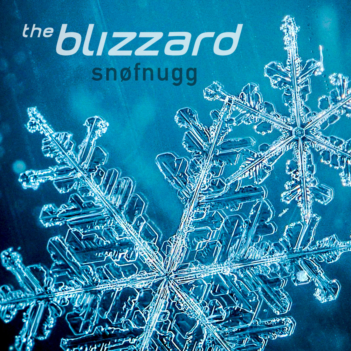 The Blizzard - Snøfnugg