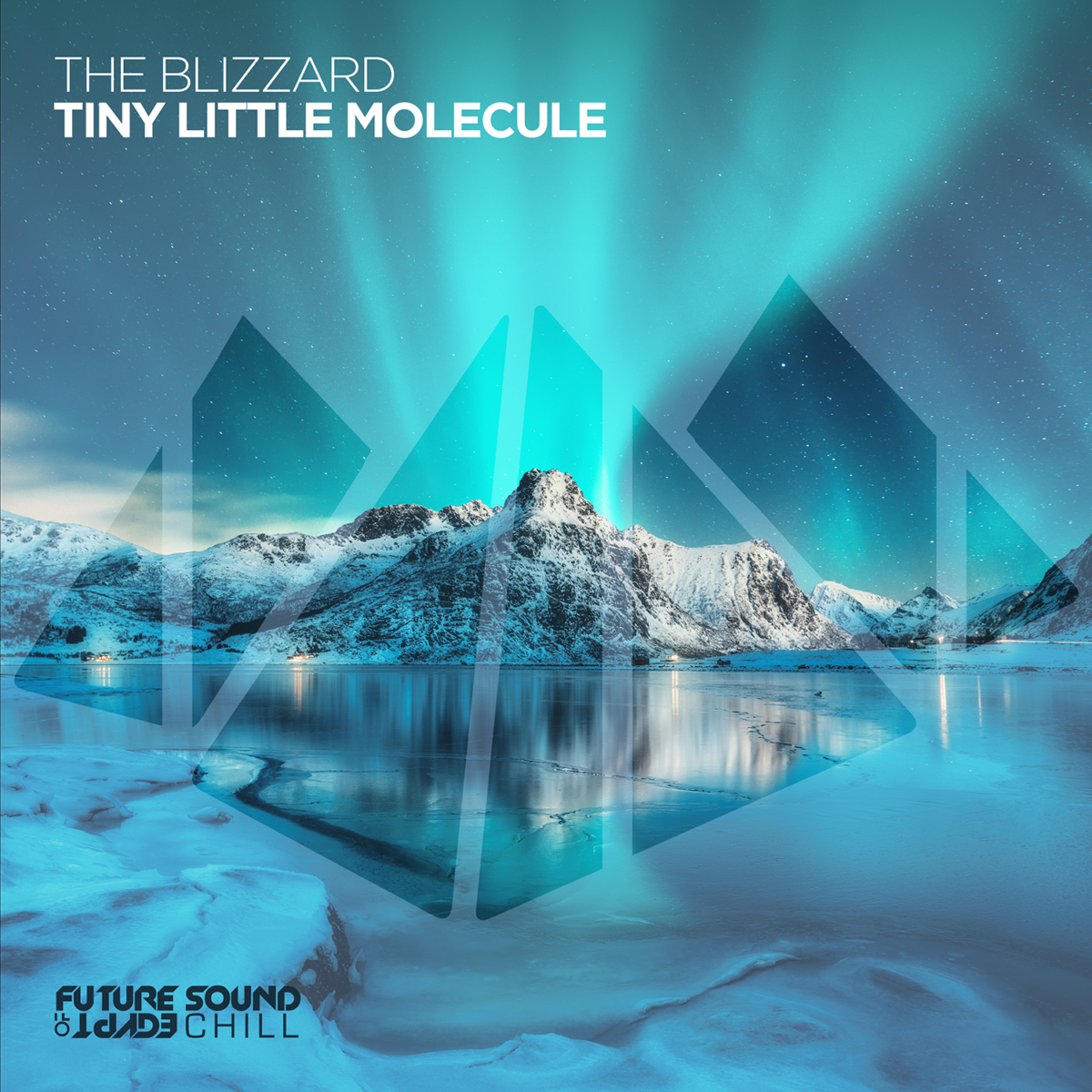 The Blizzard - Tiny Little Molecule on FSOE Chill
