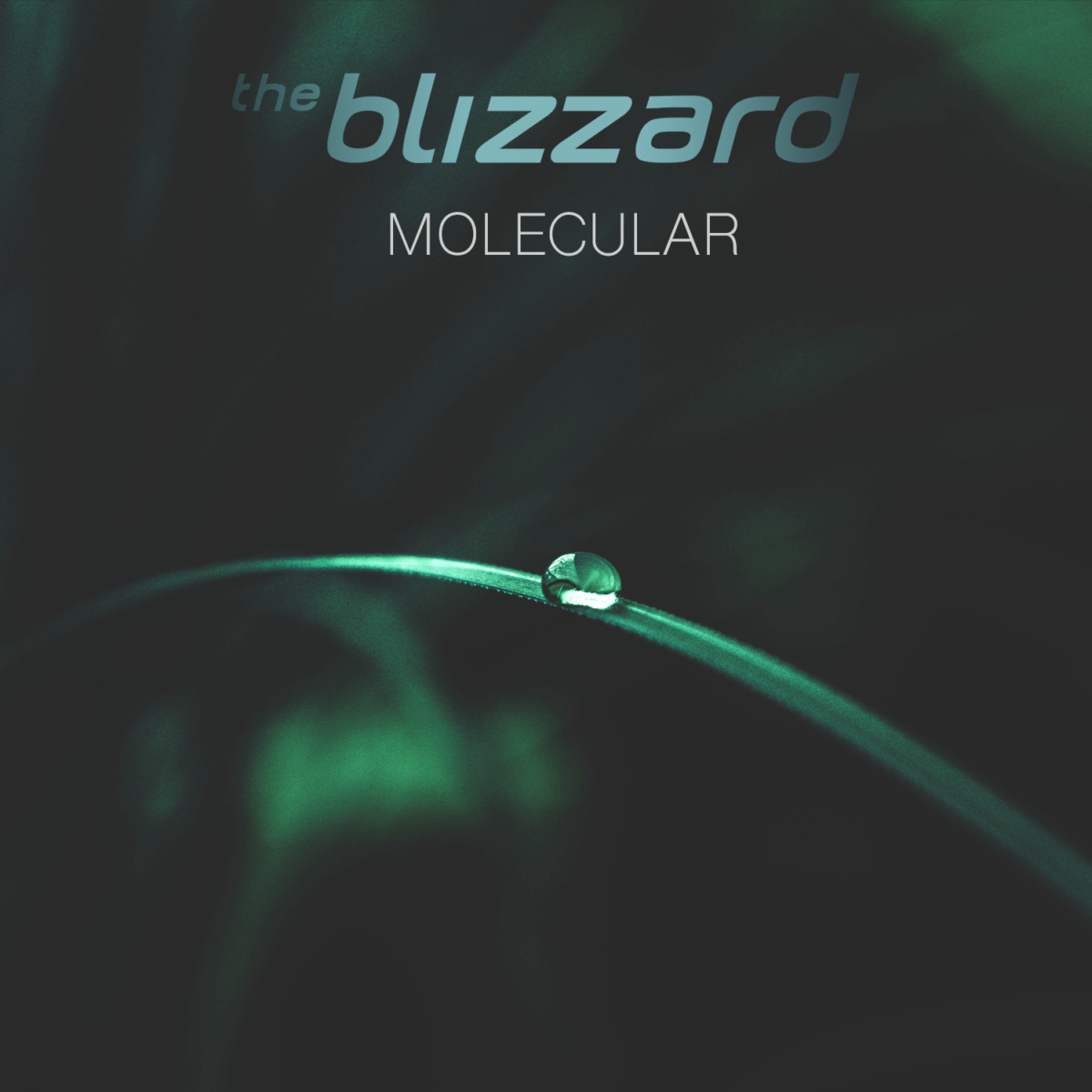 The Blizzard - Molecular [Vision Cover]