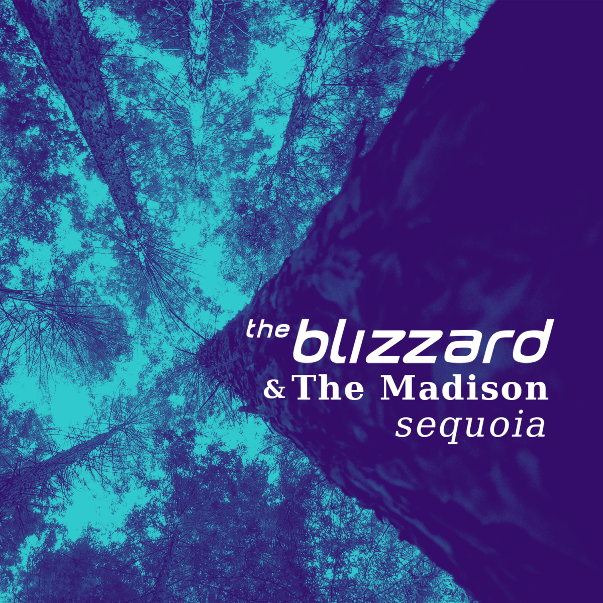 The Blizzard & The Madison - Sequoia